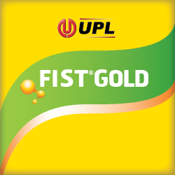 FIST GOLD®