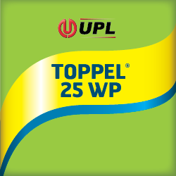 TOPPEL® 25 WP